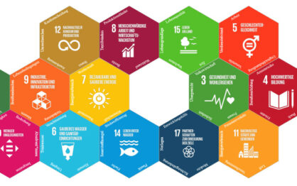 Digitale Tools: Wirkel, SDG-Glücksrad und SDG-Domino